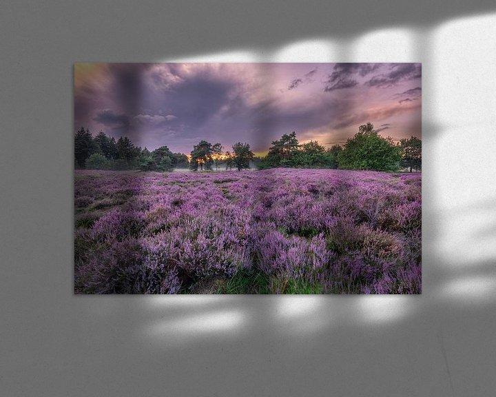 Sfeerimpressie: Bloeiende heide bij Den Treek in Leusden van Dennisart Fotografie