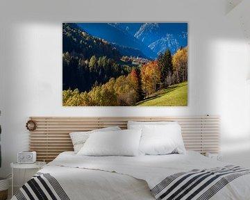 Herfst bij Mühlebach in het Wallis in Zwitserland van Werner Dieterich