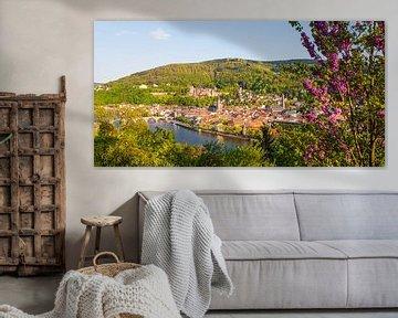 Heidelberg mit dem Heidelberger Schloss im Frühling von Werner Dieterich