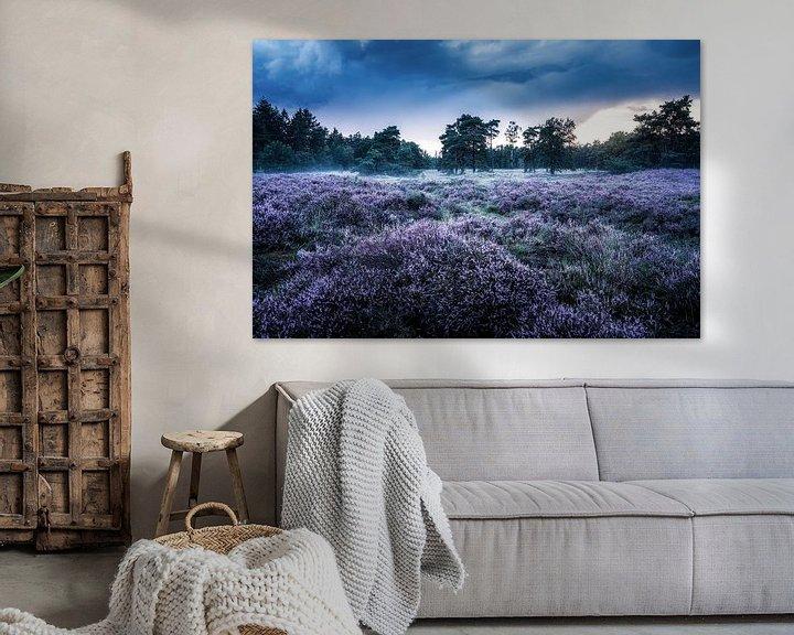 Sfeerimpressie: Heideveld in Den Treek-Henschoten van Dannis van der Heiden