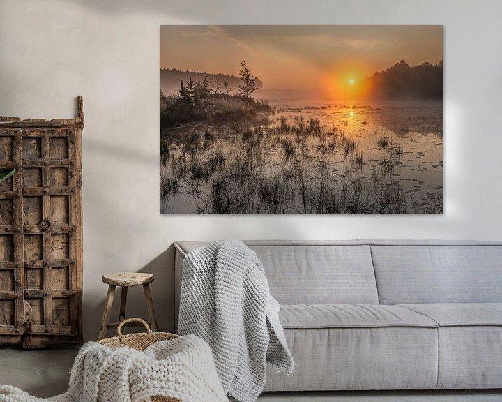 Impression: lever de soleil doré sur l'étang de la teut dans le Limbourg, Belgique sur Fotografie Krist / Top Foto Vlaanderen