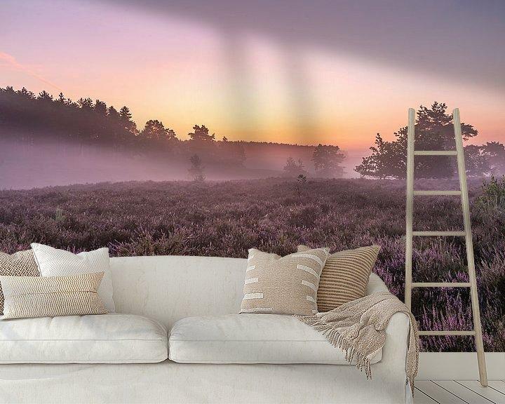 Sfeerimpressie behang: Even voor zonsopkomst op de heide van de wijers in belgisch Limburg, Belgie van Fotografie Krist / Top Foto Vlaanderen