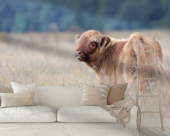 Sfeerimpressie behang: Schotse Hooglander kalf van Karin van Rooijen Fotografie
