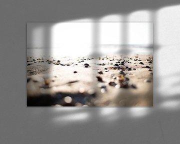 Schelpjes op het strand van Christel Verschuren