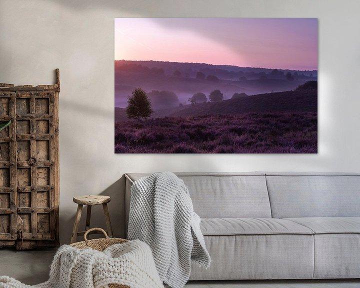 Sfeerimpressie: De paarse wereld van Albert Lamme