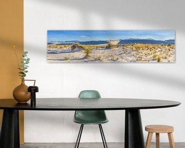 WHITE SANDS Duin Panorama van Melanie Viola
