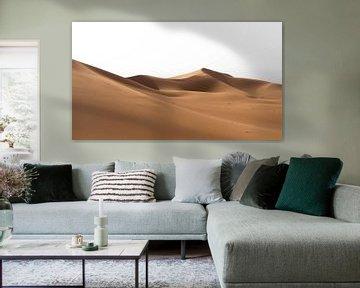 Sahara °6