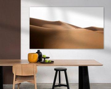 Sahara °13 van Jesse Barendregt