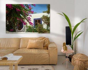 Spanisches Haus mit einer Bougainvillea von Dennis Schaefer