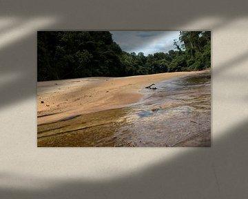 Sipaliwinirivier bij de Sir Walter Raleigh Vallen Suriname van rene marcel originals