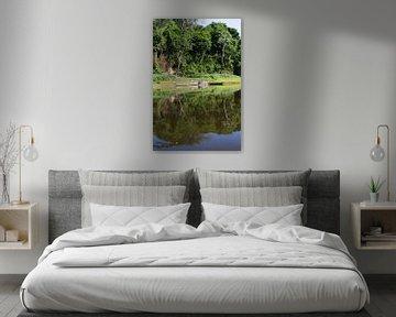 Korjaal op de Sipaliwini rivier van rene marcel originals