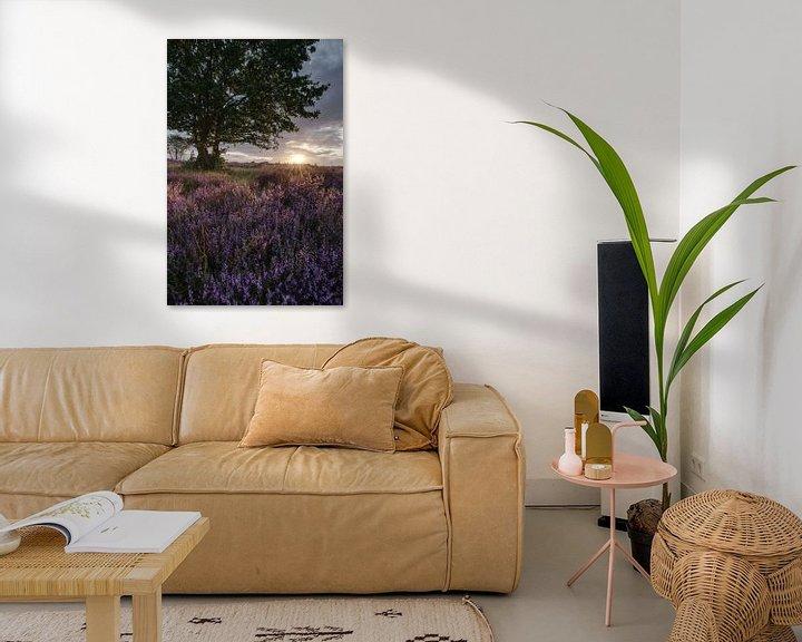 Beispiel: Heide in Blütezeit von Sander Knopper