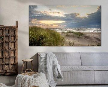 Dünen von Petten aan Zee (Nordsee) von Martijn van Dellen