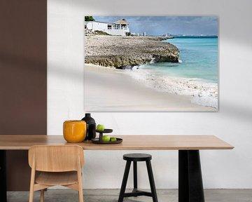 Boca Catalina Beach, Aruba van Talitha Blok