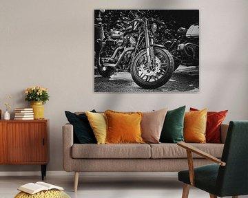 Harley Sportster Porträt von Westland Op Wielen