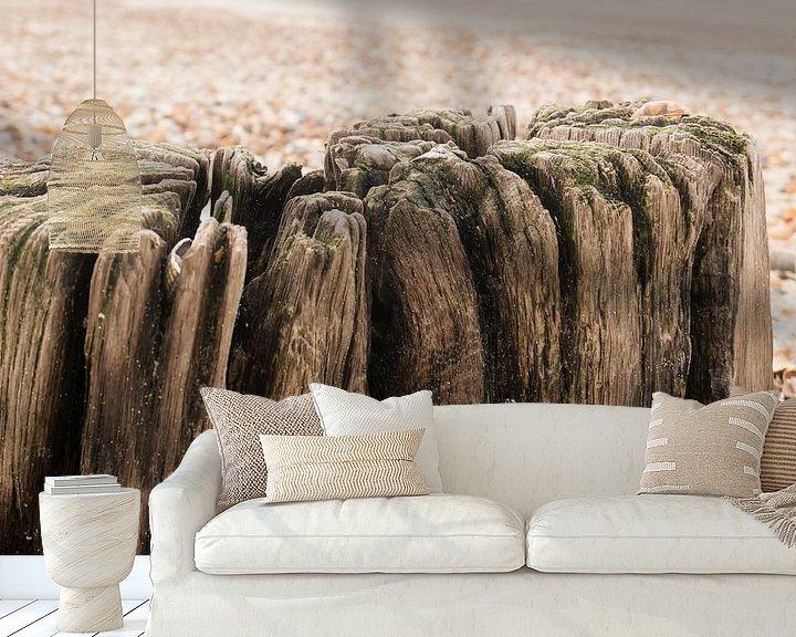 Sfeerimpressie behang: Palen en schelpen op het strand van Carola van Rooy