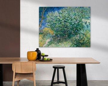 Fliederbusch, Vincent van Gogh