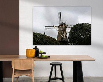 moulin zierikzee Zealand échafaudage moulin le lièvre sur Frans Versteden