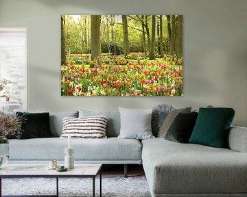 Keukenhof Serie - farbenfroh von Wilma Overwijn