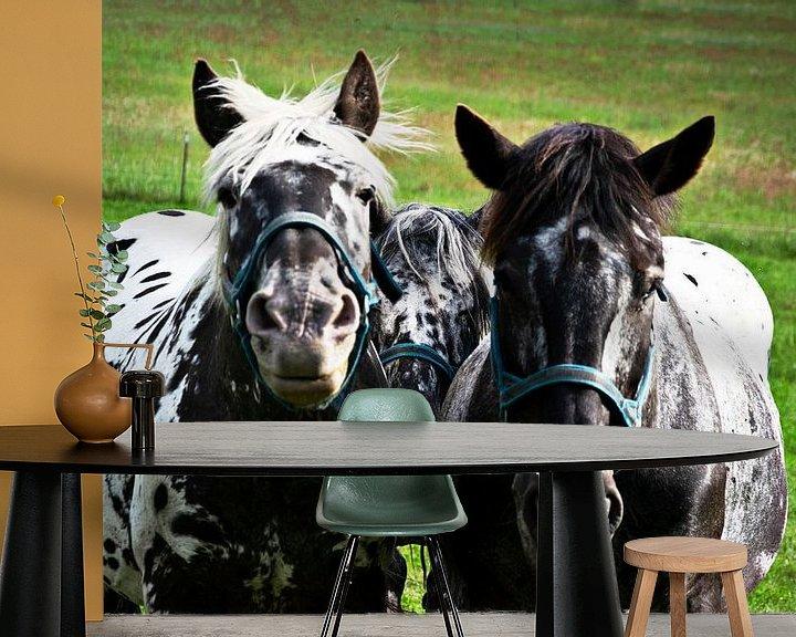 Sfeerimpressie behang: Drie paarden, drie vrienden van RK