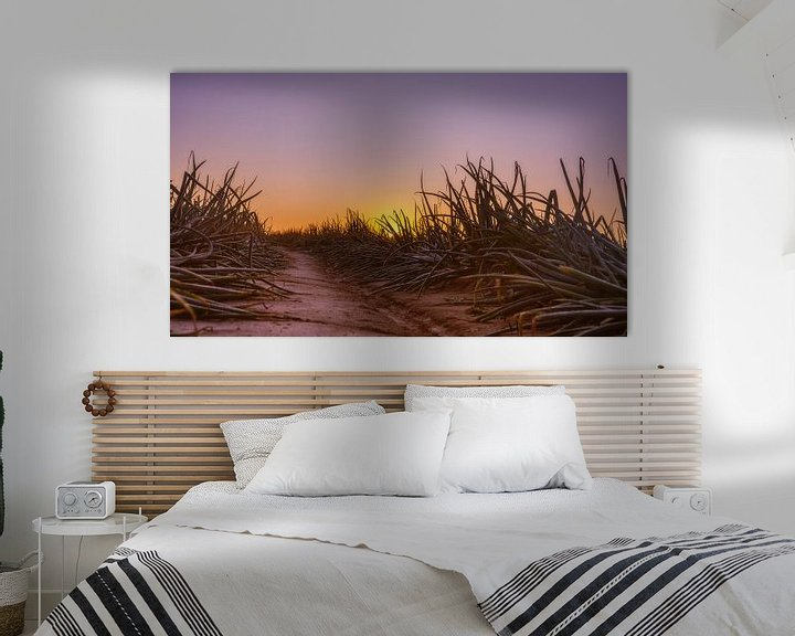 Sfeerimpressie: Uienveld bij zonsopkomst in Simpelveld van John Kreukniet