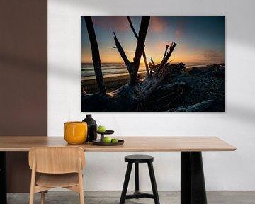 Sunset special van Hans Vellekoop