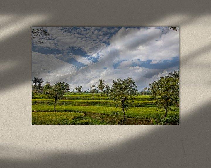 Sfeerimpressie: Geweldig groen rijstveld. Buleleng Regency, Bali, Indonesië van Tjeerd Kruse