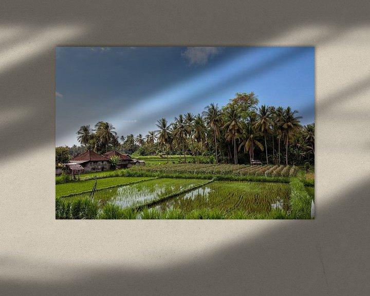 Sfeerimpressie: prachtig landschaps uitzicht op rijstterrassen en het huis van een boer van Tjeerd Kruse