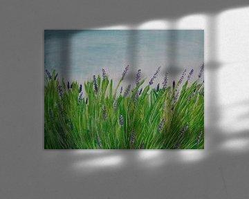 Lavendel-Liebe von Erik van Vliet