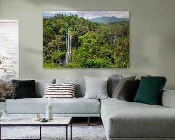Sekumpul Waterfalls in Bali, IndonesiaSekumpul watervallen in Bali, Indonesië van Tjeerd Kruse