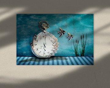 Schwimmen durch die Zeit von Fred en Roos van Maurik