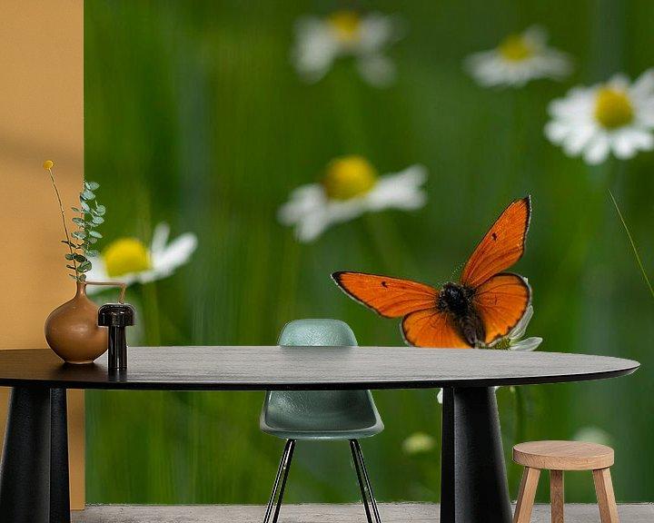 Sfeerimpressie behang: Vlinder op een kippenneuker op een kippenneus van Laura Büttner