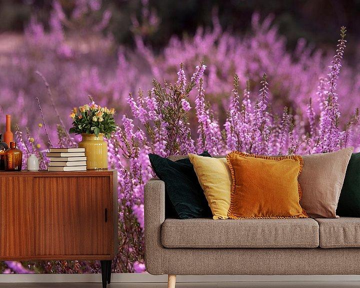 Impression: Le beau violet sur Ton van Buuren