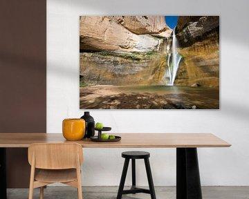 Lower Calf Creek Falls van Antwan Janssen