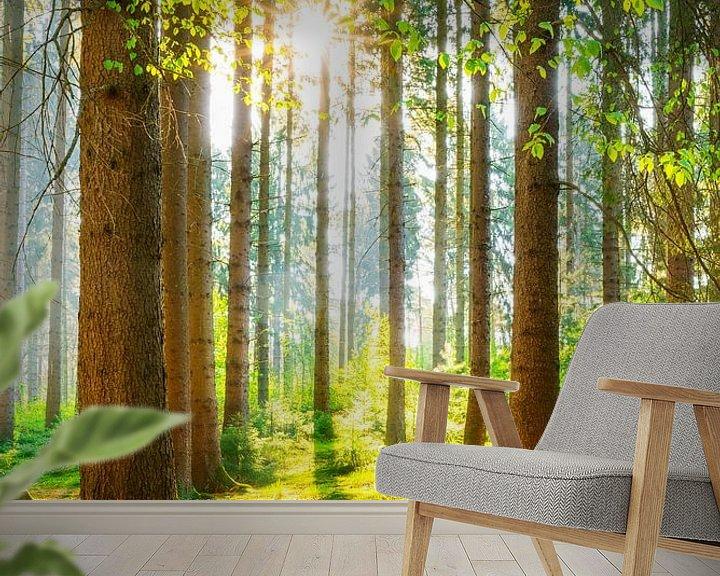 Sfeerimpressie behang: Een ochtend in het bos met felle zonneschijn van Günter Albers