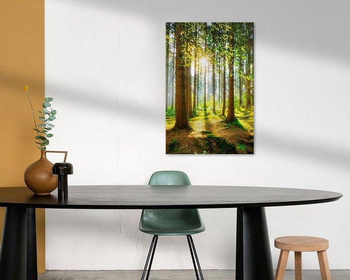 Sfeerimpressie: Een ochtend in het bos met felle zonneschijn van Günter Albers