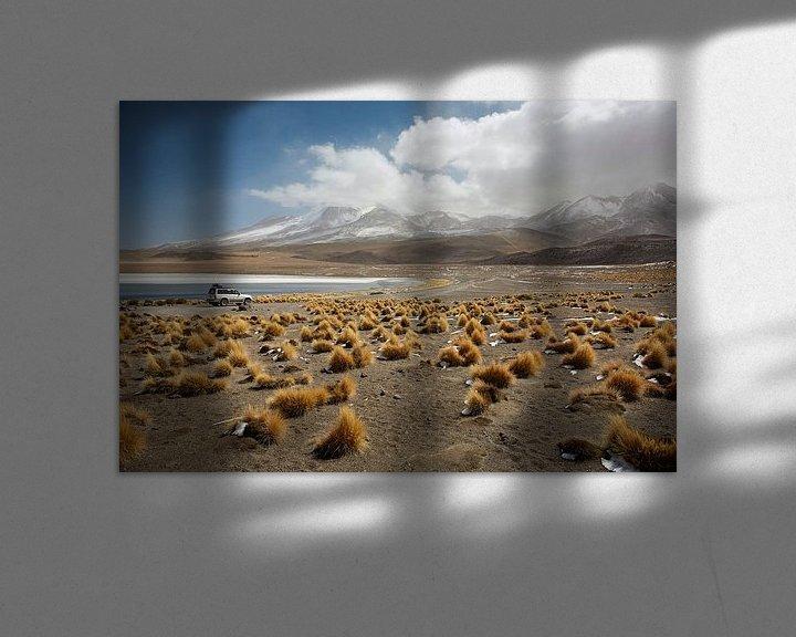Sfeerimpressie: Lake Canapa, Atacama Desert, Bolivia van Tjeerd Kruse