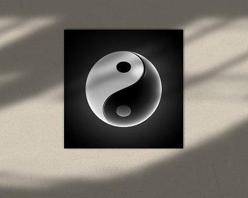 Yin-Yang Ball von Jörg Hausmann