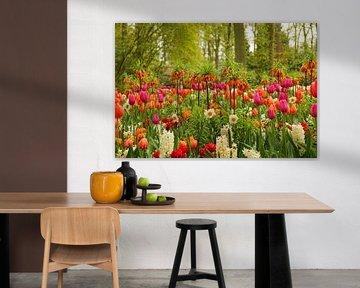 Keukenhof-Serie - farbenfrohe Blumenpracht von Wilma Overwijn