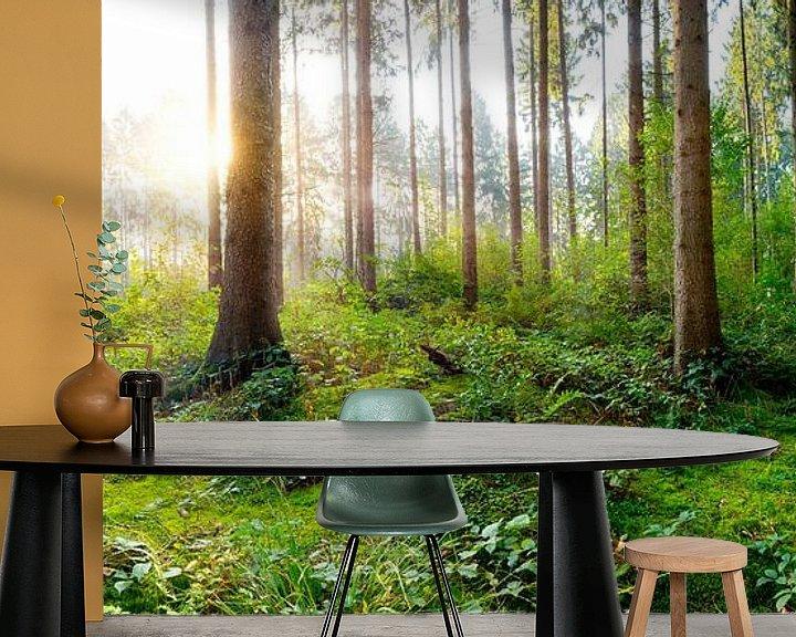 Sfeerimpressie behang: Zonsopgang in het bos van Günter Albers