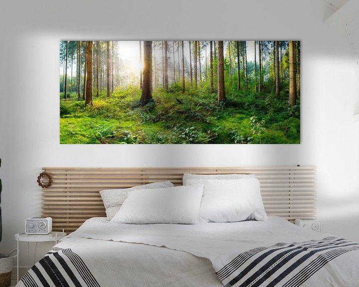 Sfeerimpressie: Zonsopgang in het bos van Günter Albers