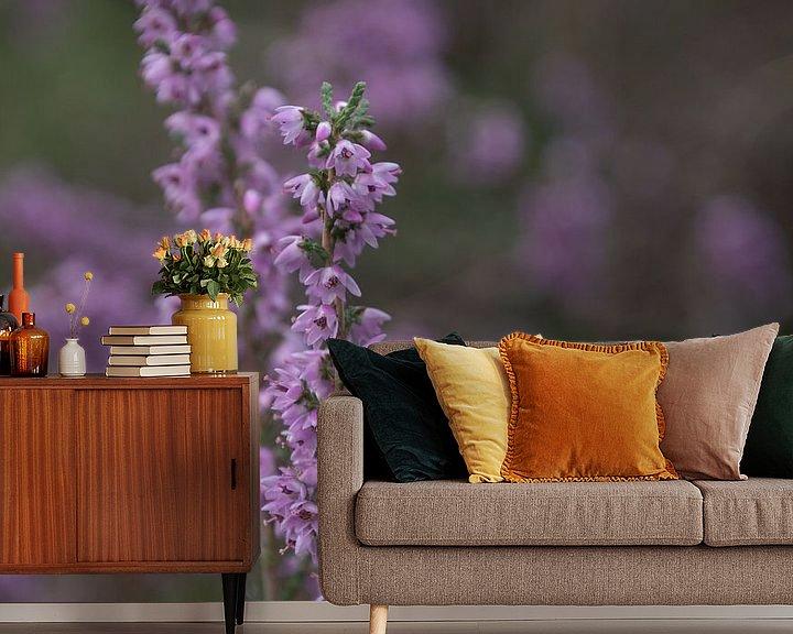 Beispiel fototapete: Blühendes Heidekraut von Ingrid Aanen