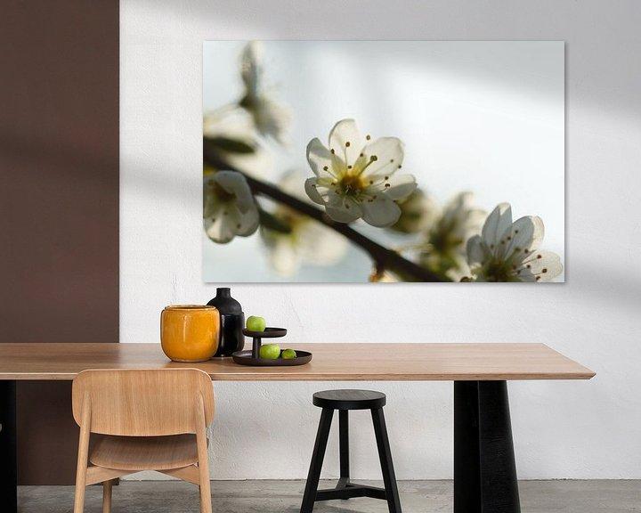 Sfeerimpressie: Lente bloesem van Carla Mesken-Dijkhoff