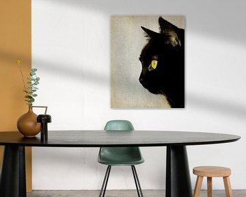 Portret van een kat
