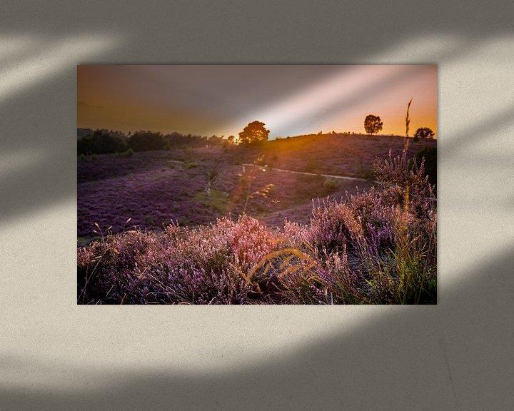 Sfeerimpressie: Ondergaande zon op Posbank van Marcel Krijgsman