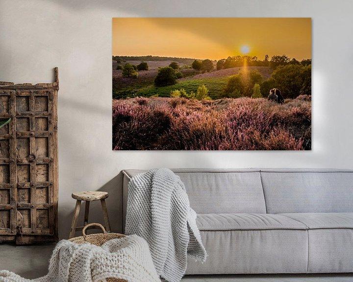 Sfeerimpressie: Ondergaande zon op de Veluwe van Marcel Krijgsman