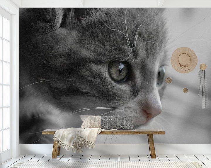 Sfeerimpressie behang: Kitten is watching you van Mirjan Steenbergen