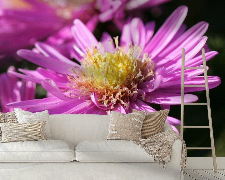 Sfeerimpressie behang: Roze, bijna uitgebloeide, bloem van Lynn van Baaren