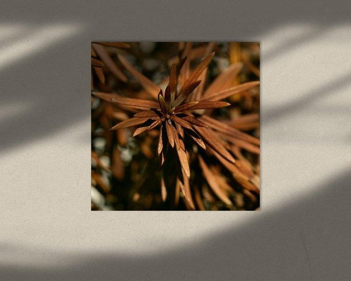 Sfeerimpressie: Bruine stekels / naalden van Lynn van Baaren