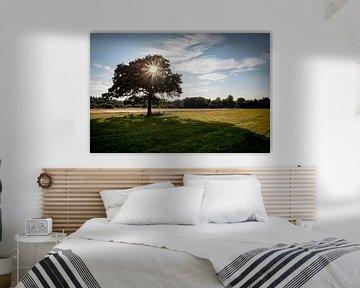 Landschaft mit Baum von Pierre Verhoeven
